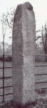 Coolmagort Ogham Stone [13kB]