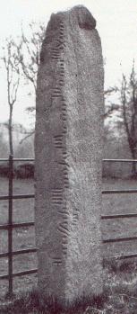 Coolmagort Ogham Stone [13kB]